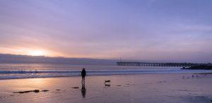 beach-1302118_1920